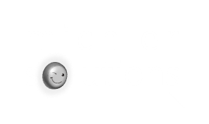 logoMichlerSolutions